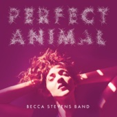 Becca Stevens Band - Higher Love