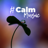 soothing music academy - # Calm Music: Almost 2 Hours of Relaxation, Just Relax, Keep Calm & Stress Relief