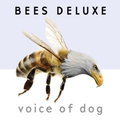 Voice of Dog