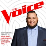 How Am I Supposed To Live Without You (The Voice Performance) - Single