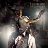 Meinhard - Wasteland Wonderland artwork