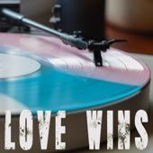 Love Wins (Originally Performed By Carrie Underwood) [Instrumental]-Vox Freaks