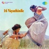 16 Vayathinile (Original Motion Picture Soundtrack)