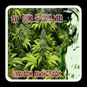 Carlton Livingston - Mr DJ