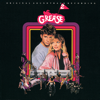 The Cast Of Grease 2 - Who's That Guy? artwork