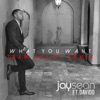 What You Want (feat. Team Salut) [Team Salut Remix]- Single, Jay Sean & Davido
