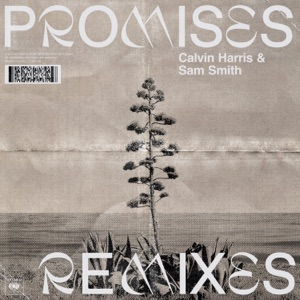 Promises (Remixes) Mp3 Download