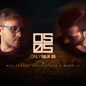 Only Silk 05 (Mixed by Max Flyant and Vintage & Morelli)