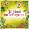 Te Mooi Om Te Vergeten Vol. 6 - Various Artists