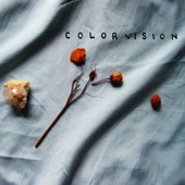Colorvision - Looking For