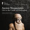 Ancient Mesopotamia: Life in the Cradle of Civilization (Original Recording) - The Great Courses