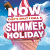Various Artists - Now That's What I Call a Summer Holiday artwork