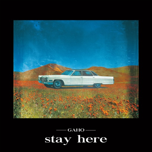 Stay Here - Single