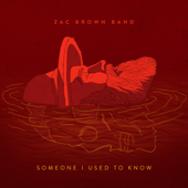 Someone I Used To Know-Zac Brown Band