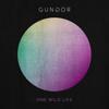 One Wild Life - Gungor