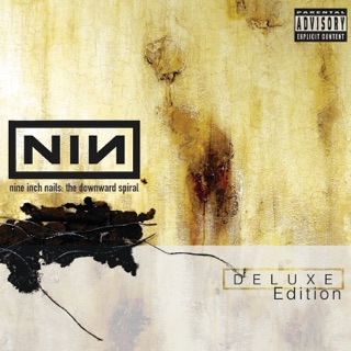 Good Nine inch nails suck megaupload everything. simply