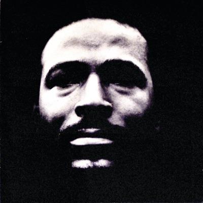 Vulnerable - Marvin Gaye