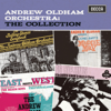 Andrew Oldham Orchestra & Chorus - Needles and Pins artwork