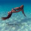 Zero-Project - Slow Motion artwork