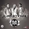 Inimă Nebună - Single, DJ Project & Mira