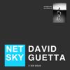 Netsky & David Guetta - Ice Cold Grafik