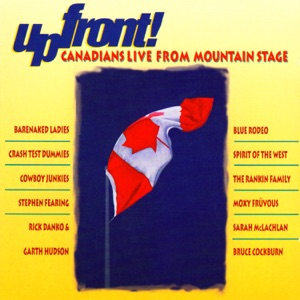Crash Test Dummies - Superman's Song (Live)