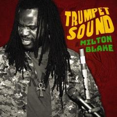 Trumpet Sound - EP