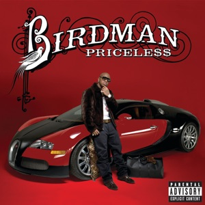 Birdman & Lil Wayne - Money to Blow feat. Drake