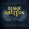 Every Which Way but Loose (Friends and Heroes Session) - Single, Blake Shelton