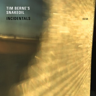 Incidentals – Tim Berne's Snakeoil