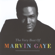Marvin Gaye What's Going On - Marvin Gaye