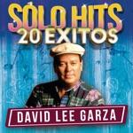 David Lee Garza - Tu Boca Roja