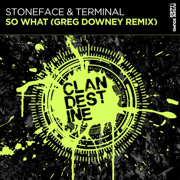 Stoneface & Terminal mit So What (Greg Downey Extended Remix)