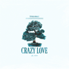 Future Animals - Crazy Love artwork