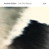 Avishai Cohen - Dream Like a Child