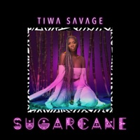 Wizkid, Spellz & Tiwa Savage - Sugarcane - EP