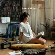 Those Dancing Days Are Gone - Carla Bruni - Carla Bruni