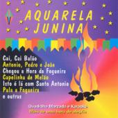 [Download] Pot-Pourri de Quadrulhas: Quadrilha Brasileira / Quadrila do Zé Moringa / Quadrilha do Bacurau / Quadrilha do Zé Pipa / Fim de Festa / Quadrilha Brasileira (Instrumental Karaokê) MP3