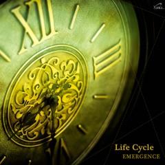 Life Cycle - Emergence