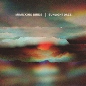 Mimicking Birds - Time to Waste