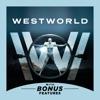 Westworld, Season 1 - Synopsis and Reviews