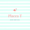 Placea T - Nothing but a Story Sale artwork