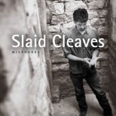 Slaid Cleaves - Borderline