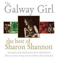Sharon Shannon - Blackbird artwork