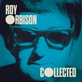 Roy Orbison - Working for the Man