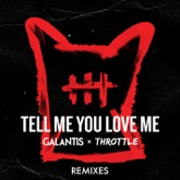 Tell Me You Love Me (Remixes) - EP