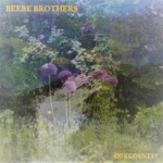 Beebe Brothers - Beg, Steal or Borrow