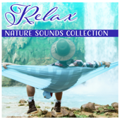 Relax: Nature Sounds