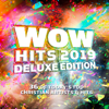 Various Artists - WOW Hits 2019 (Deluxe Edition) artwork