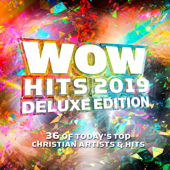 WOW Hits 2019 (Deluxe Edition)-Various Artists